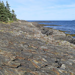 We stayed at a campground called The Ovens on the coast of Nova Scotia. Dramatic rock formations, cliffs and sea caves.